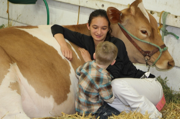 Guernsey Girl Taryn teaching Karter about the cows.