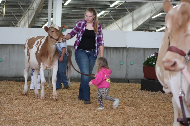 Kinzie was more interested in running and playing than being a serious showman. But who wants to be serious at 2 years old.